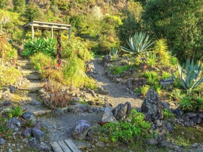 17 Hillside Landscaping Ideas to Beautify Your Hillside Yard in 2020