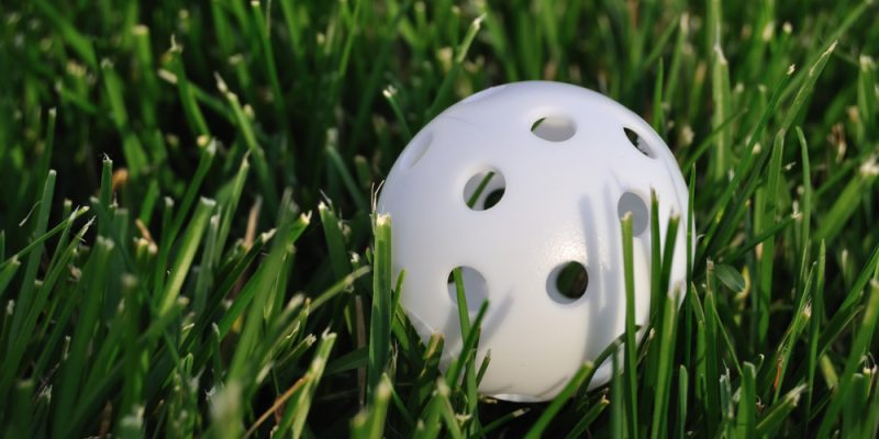 How to make a Wiffle Ball Field in your Backyard 2020