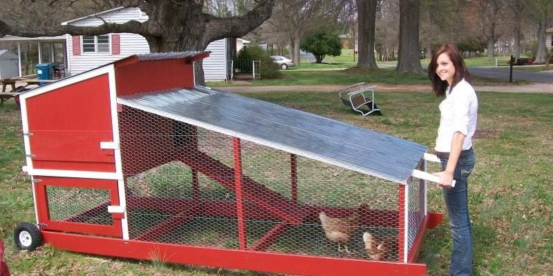 10 Portable Chicken Coop Plans [Easy to Move]