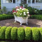 15 Awesome and Cheap Landscaping Ideas: #7 Is Too Easy