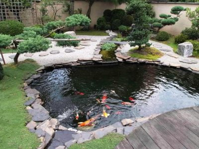 15 Backyard and Garden Pond Design and Ideas