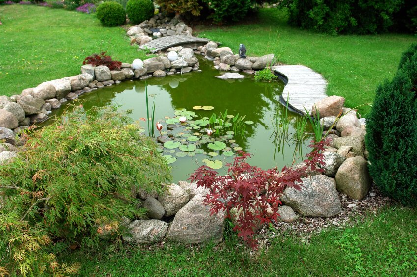 A Garden Pond with a Small Stream
