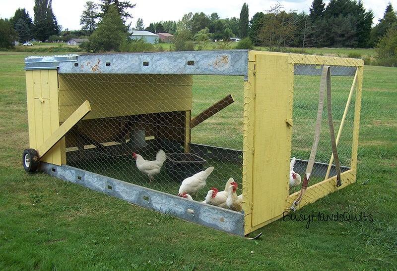 Chicken Coop on Wheels or Chicken Tractor