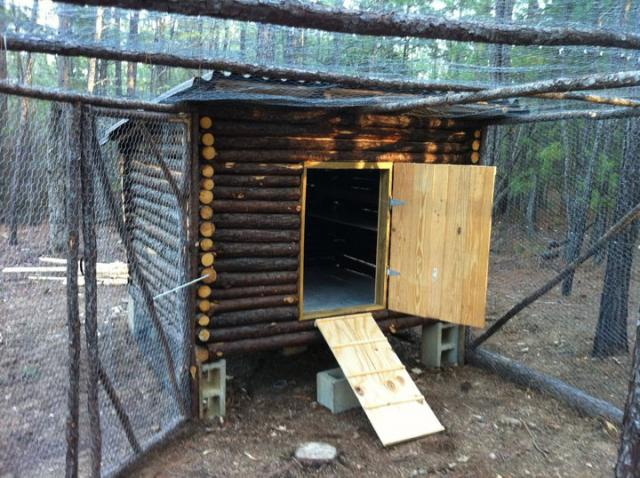 Wood Cabin Design