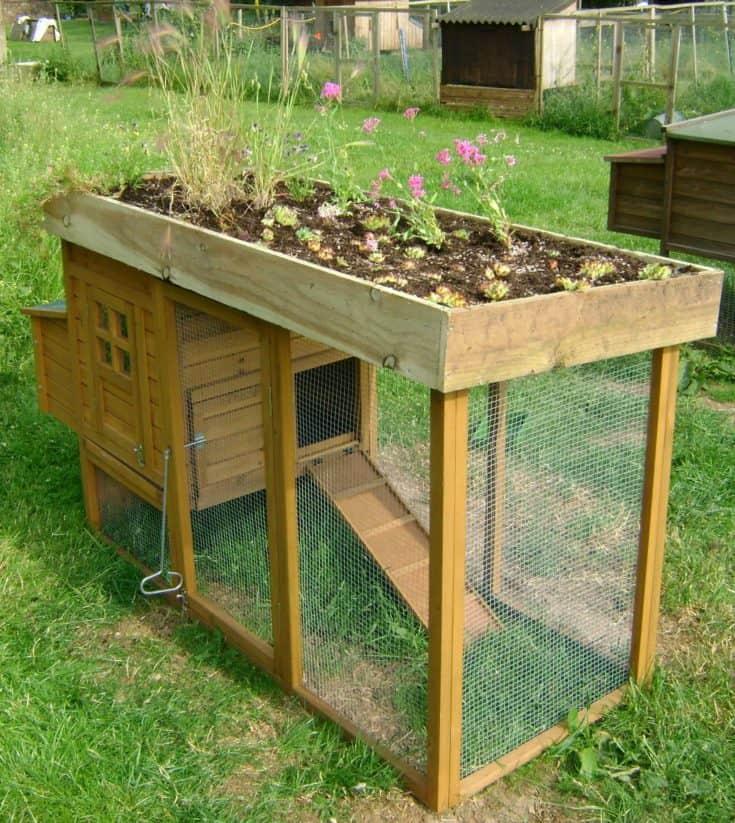 Rooftop Garden Bed Design