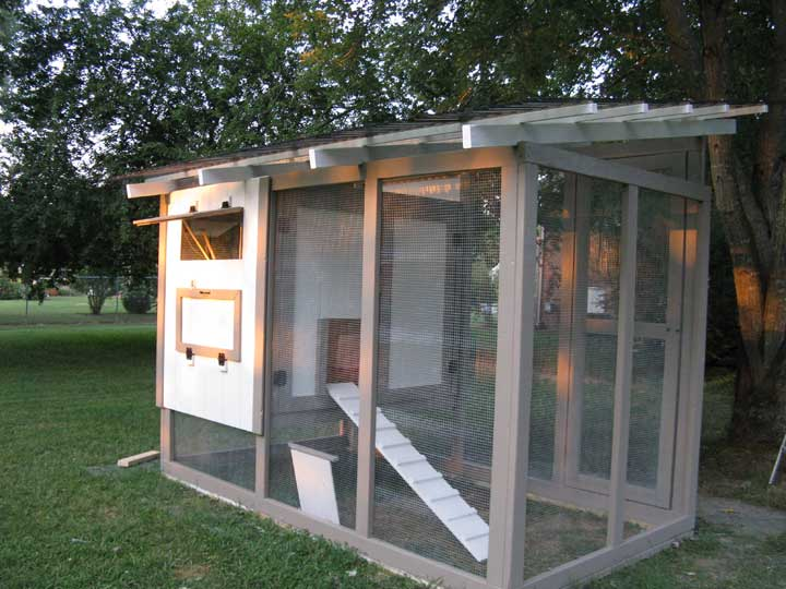 Close-Packed Chicken Coop with Running Area