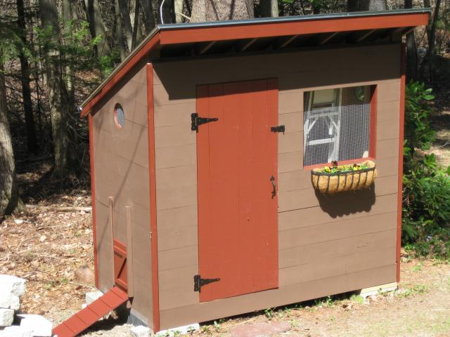 Secure Chicken Coop and Run Design
