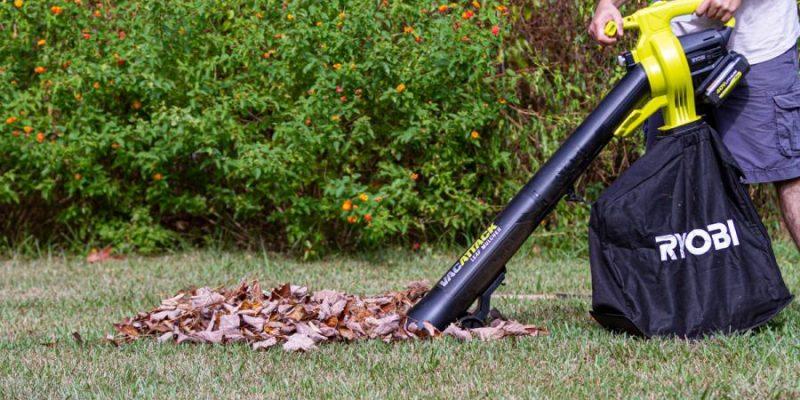 Should You Buy a Leaf Blower or a Rake?