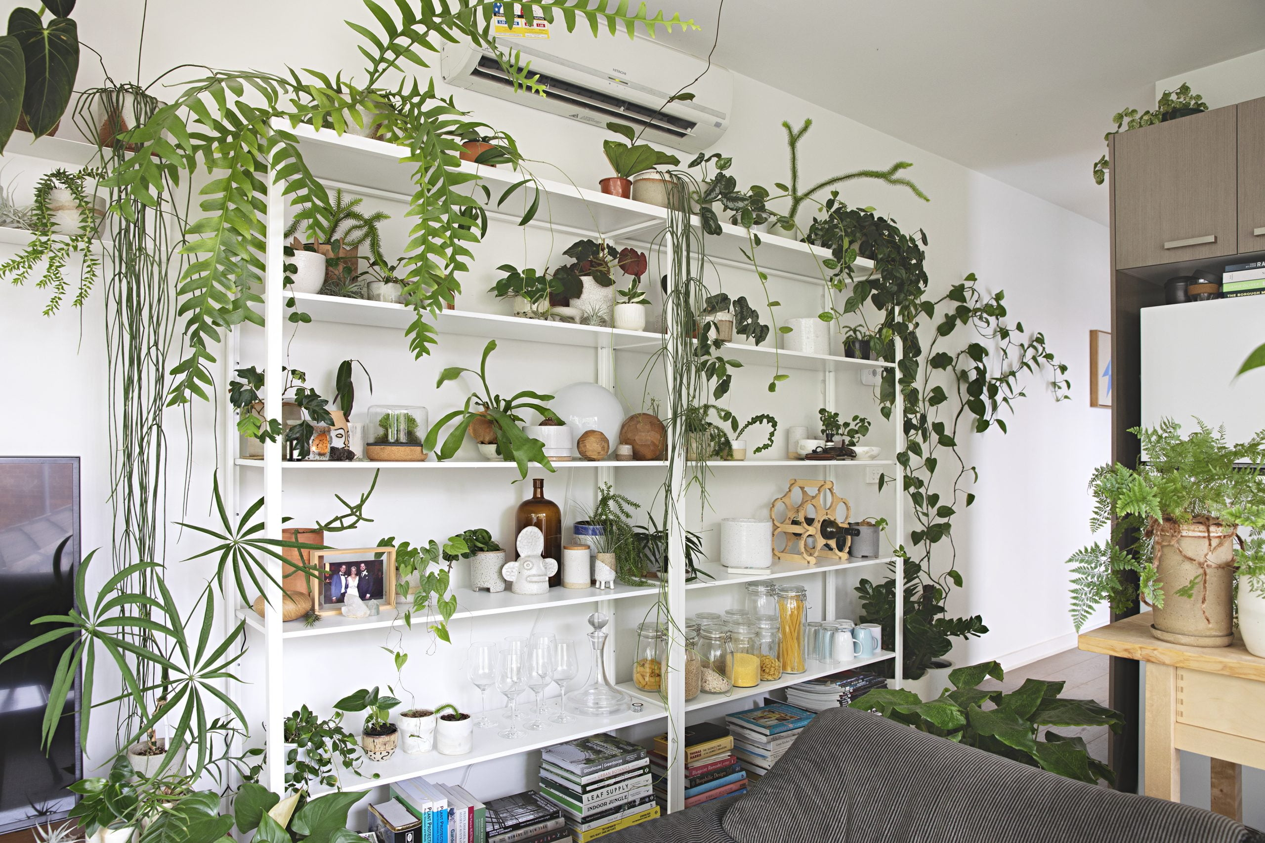 The Best Indoor Plant Stands Shelves For Your Home Organize With Sandy