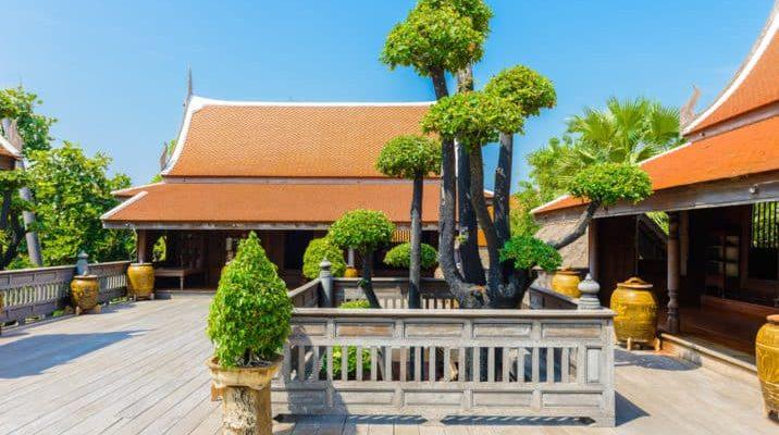 13 Stunning Giant Bonsai Trees