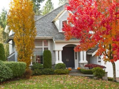 18 Of the Best Fall Landscape Ideas