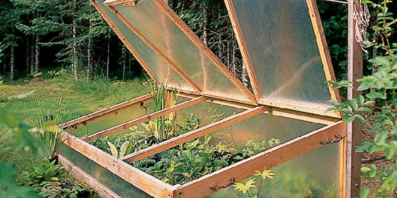 20 Greenhouse Cold Frame Designs