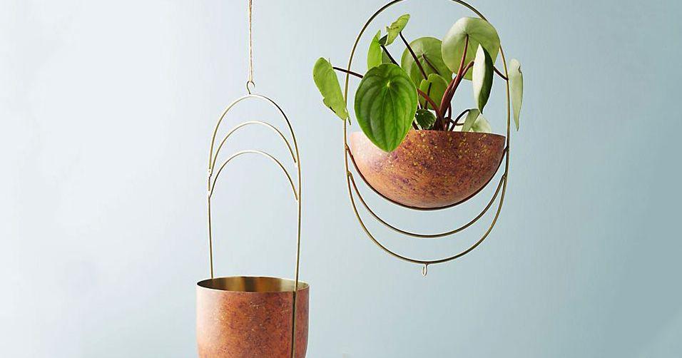 Benefits of hanging plants