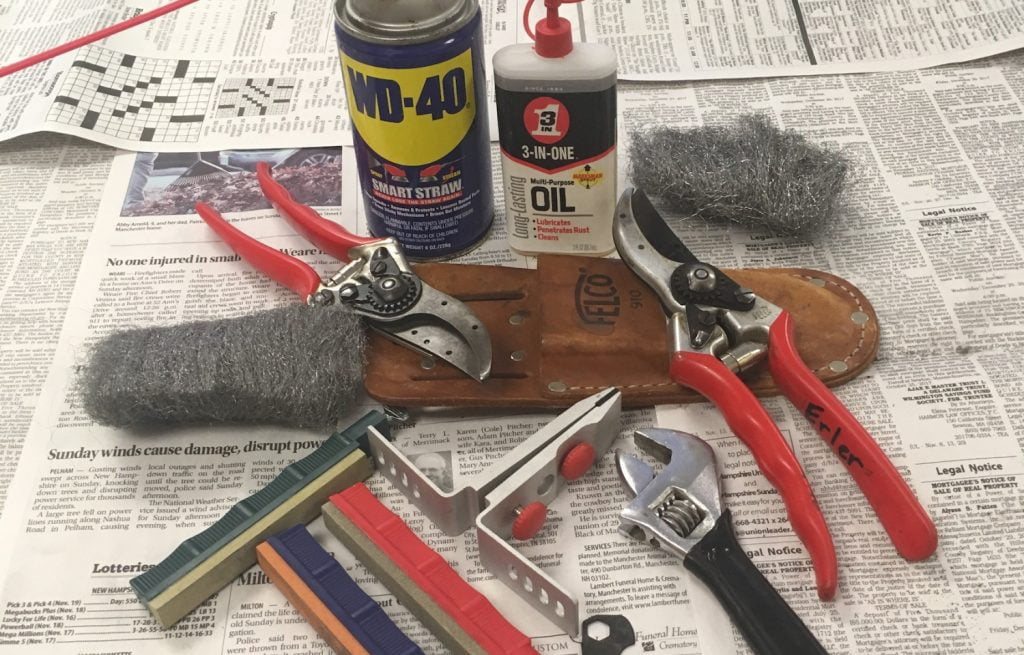 Cleaning Your Pruning Shears
