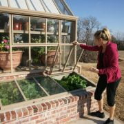 Cold Frame Vs. Greenhouse