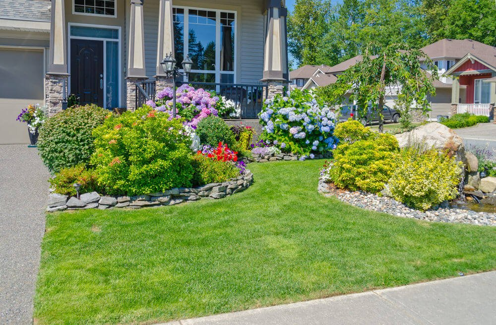 Colorful and Natural Front Lawn