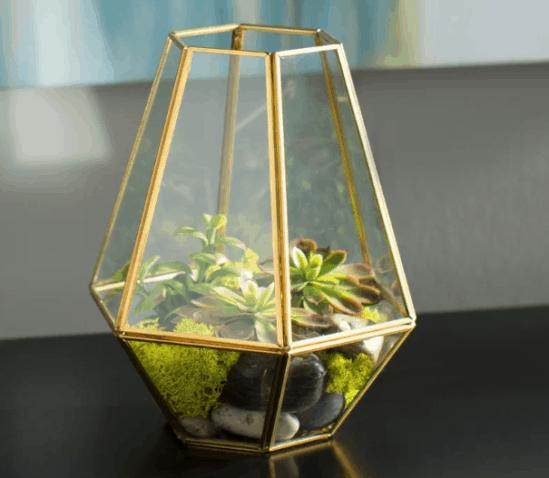 Glass Garden Terrarium Ideas