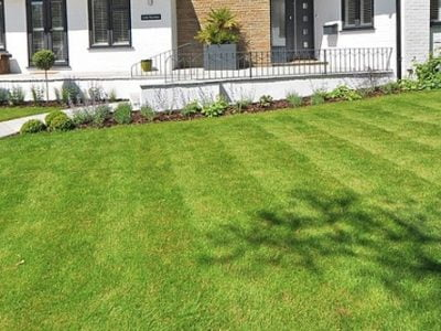 GreenView Fall Lawn Food Review 2020