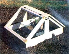 Hinged Top Cold Frame
