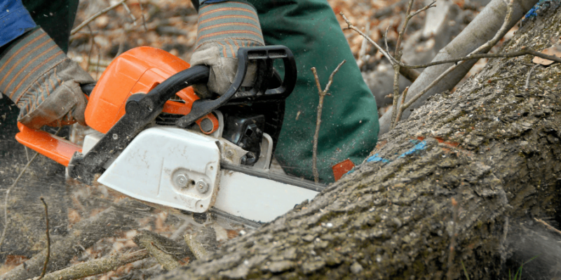 How Does a Chainsaw Work?