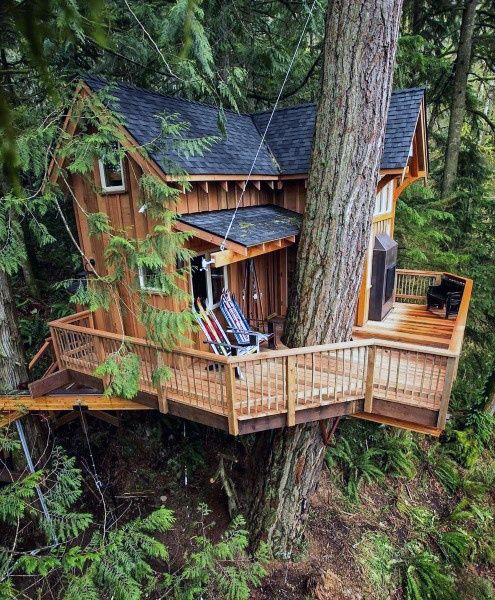 Pre-Placed Treehouse Ideas