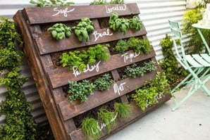 Recycled Pallet Vertical Herb Garden