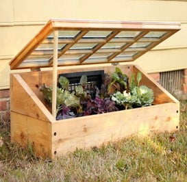 Salvaged Window Cold Frame