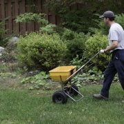 The Right Time to Fertilize Your Lawn