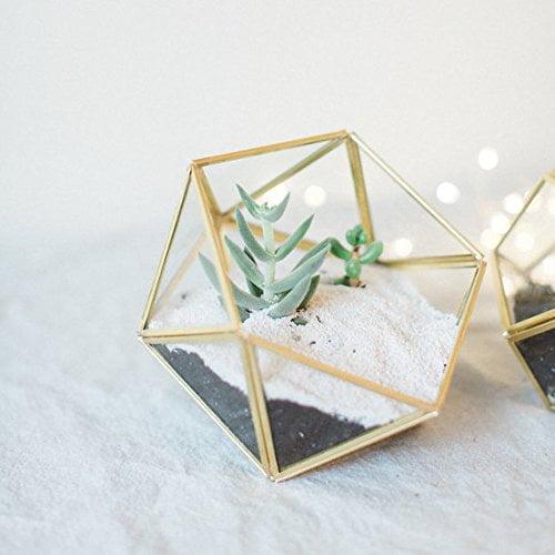 Tiny Garden with Sand