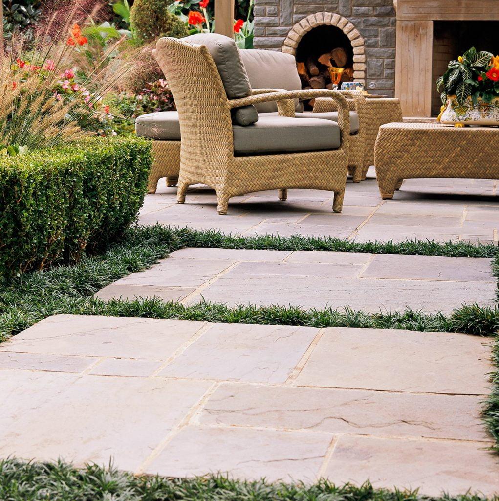 Garden Pever Arrangements