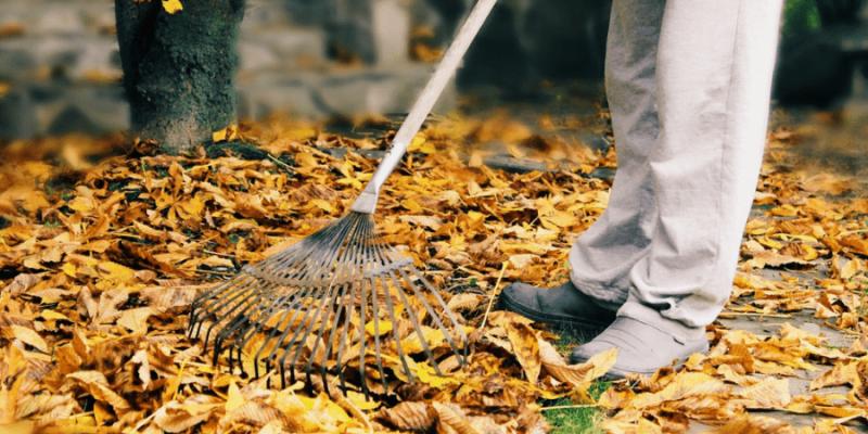 14 Top Leaf Raking Hacks Every Homeowner Should Know