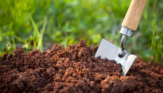 Add the Soil