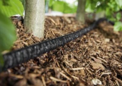 Bury Your Garden Hose Underground