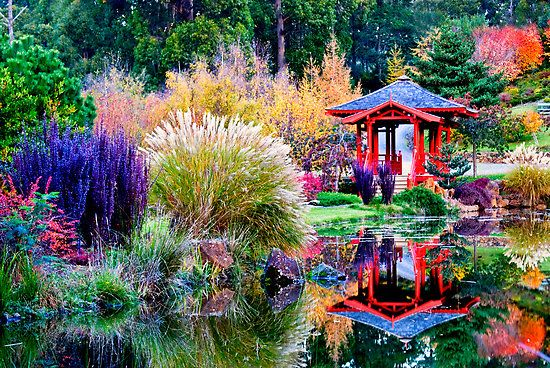 Colorful Japanese Garden