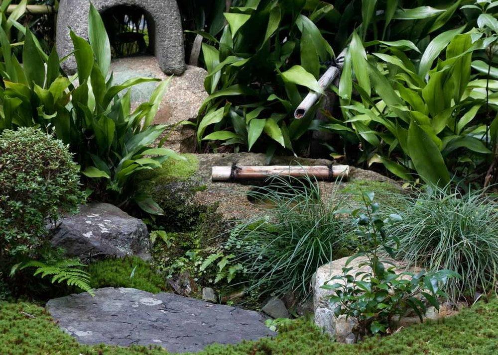 Grass plates japanese garden