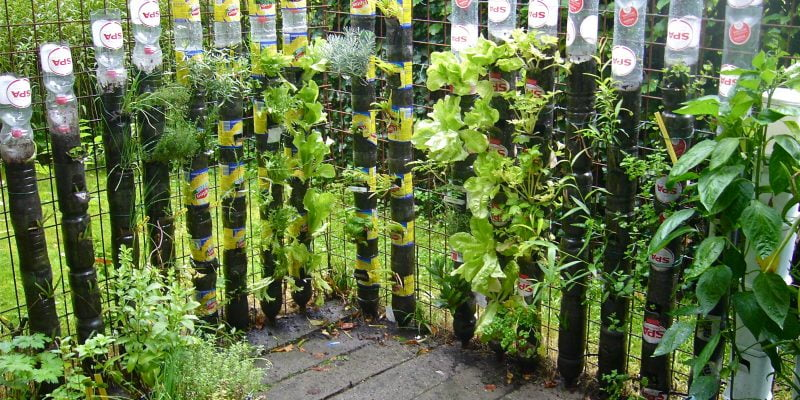 How to Make a Bottle Tower Garden?