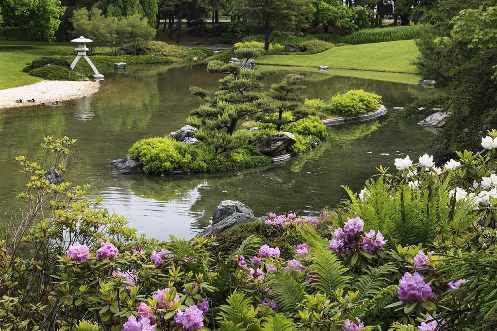 Garden for Bird Lovers