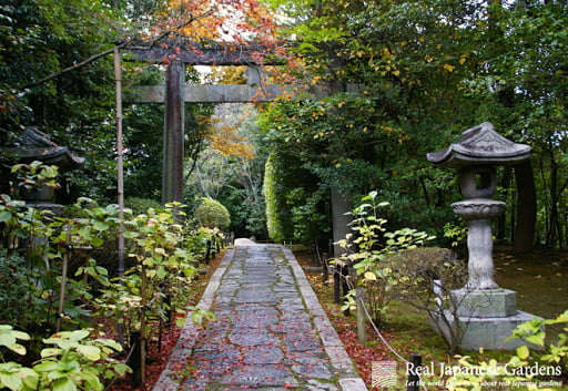 Garden with a Walking Path