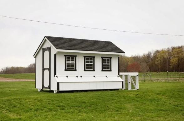 Large Farmhouse Coop