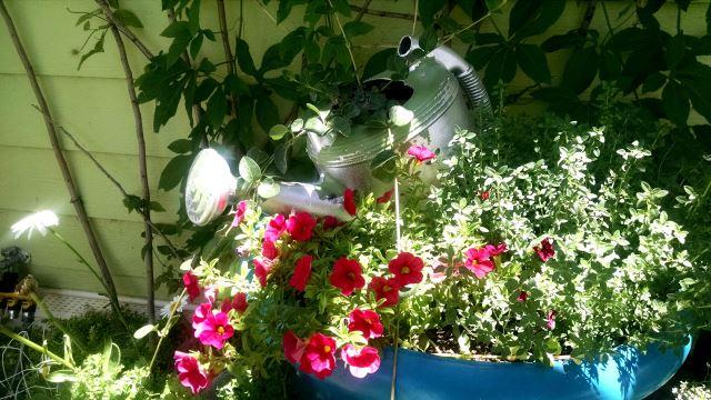 Make A Simple Stacked Garden