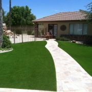 Real vs. Artificial Turf! The Battle of Gardens!