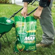 Revive Lawn Treatment Review: Organic Granules