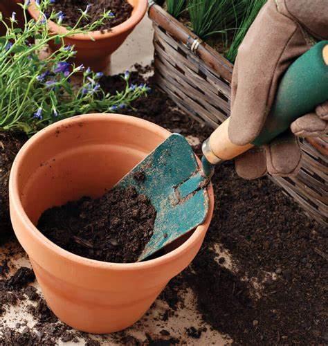 Soil in a Pot