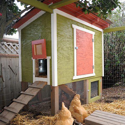 Urban Chicken Coop Plan