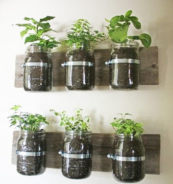 Using Recyclable Pots