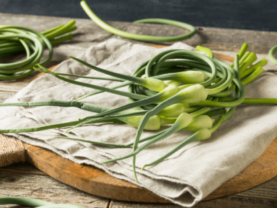 What are Garlic Scapes and What Can You Do with Them?